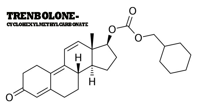Trenbolone (Tren) Androgen & Anabolic Steroid Review